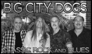 bigcitydogs